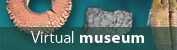 icon of Virtual museum