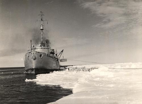 Expedice do Antarktidy