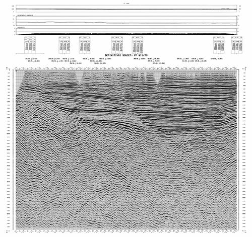 Ukázka časového migrovaného řezu z oblasti Vídeňské pánve
