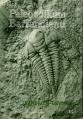 Paleozoikum Barrandienu (kambrium-devon)
