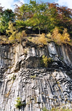 "Columnar jointing in alkali basalts at Zlatý vrch (the Golden Hill), the  so-called ""Basaltic Organ'"
