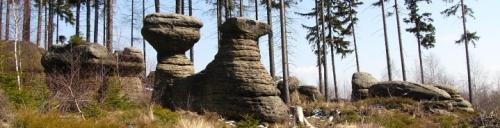 Pískovcové skalní hřiby na Slavném - Broumovské stěny