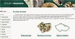 Náhled webu Virtuální muzeum