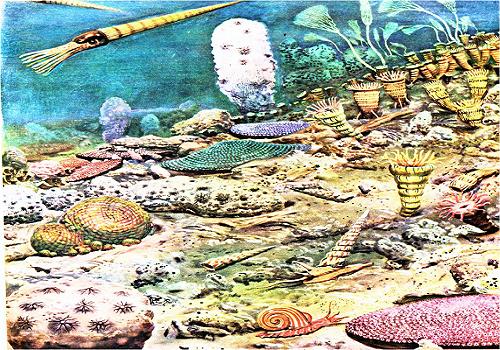 Silurské moře (prvohory)